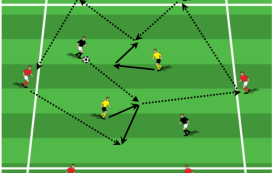 Team Shape and Ball Circulation